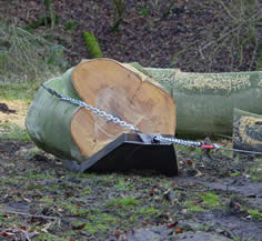 Large tree trunk being winched